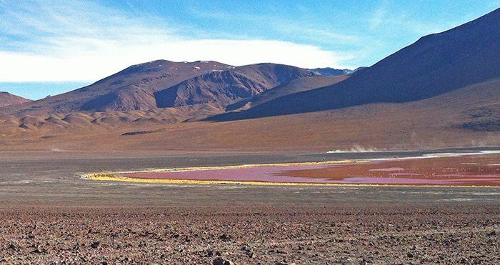 Una sección de la Laguna Colorada - como llegar al salar de uyuni - tours al salar de uyuni precios