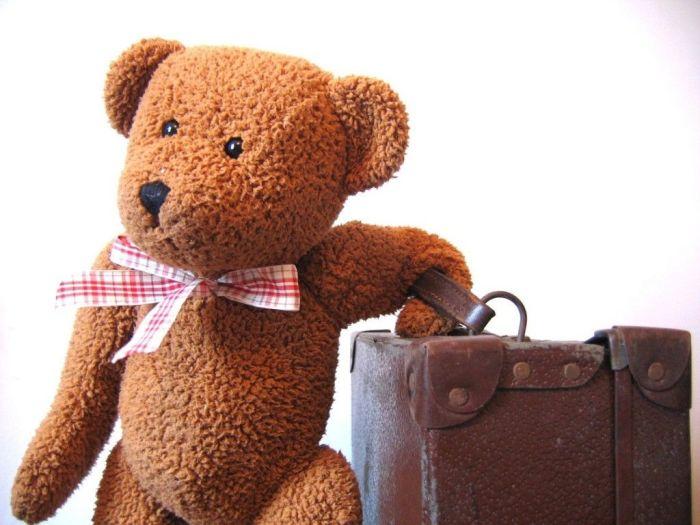 osito-teddie-viajero