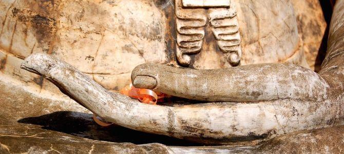 Vipassana experience – Sentando las bases de la rutina