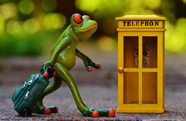 rana-telefono-web1 - estar en contacto