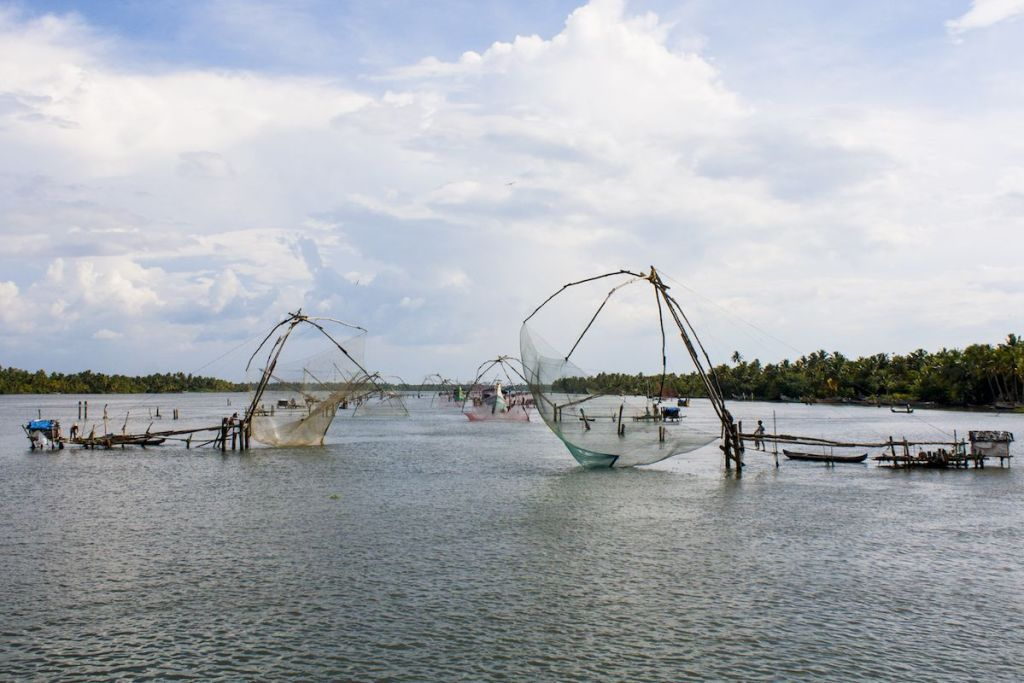 redes chinas pesca