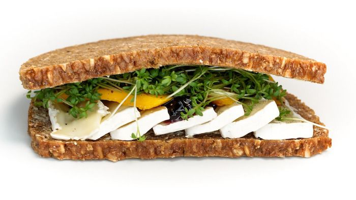 sandwich-picnic