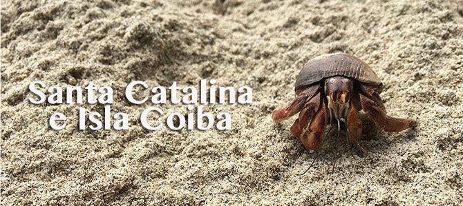 Una accidentada pero increíble visita a Isla Coiba y Santa Catalina