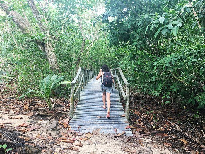 Parques de Puerto Viejo Costa Rica