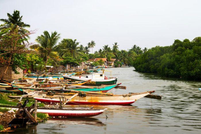 Sri Lanka - Vacaciones verano 2017