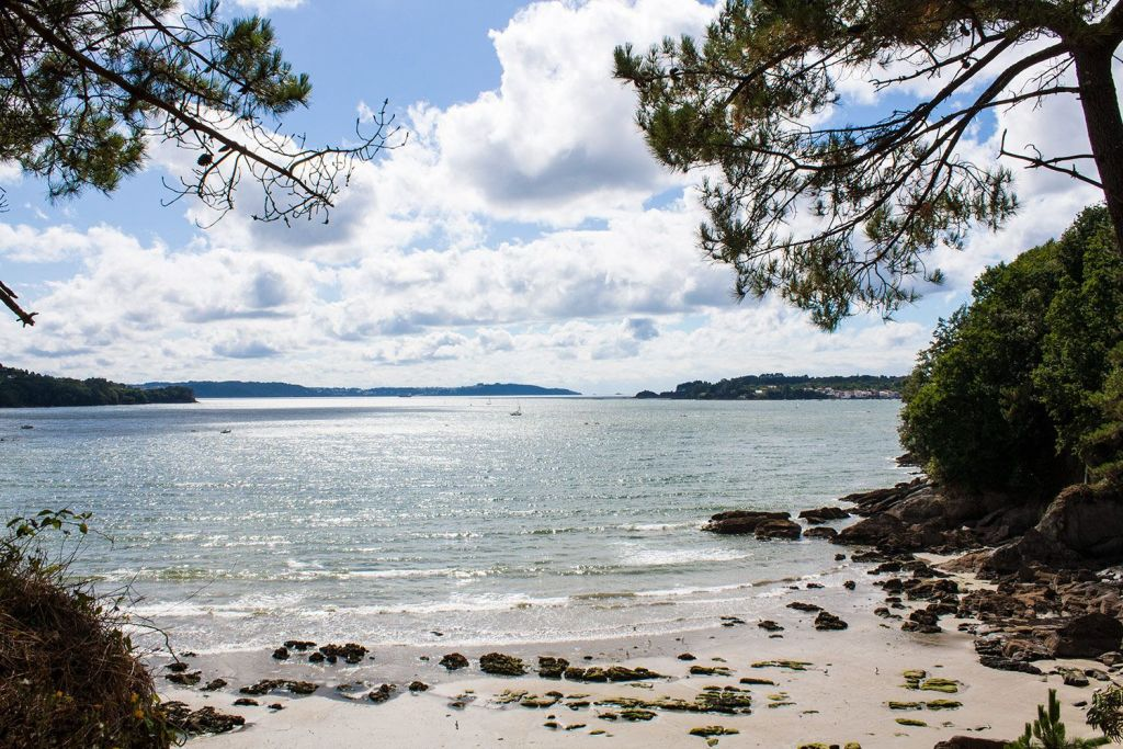 Cabanas playas bosque y río