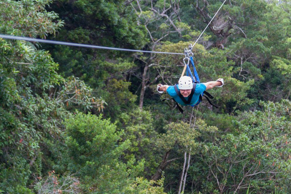 canopy - Qué ver y qué hacer en Monteverde Costa Rica