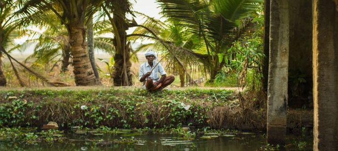 10 experiencias inolvidables que debes vivir en Kerala
