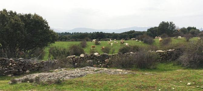 Fin de semana en la Sierra Norte de Madrid