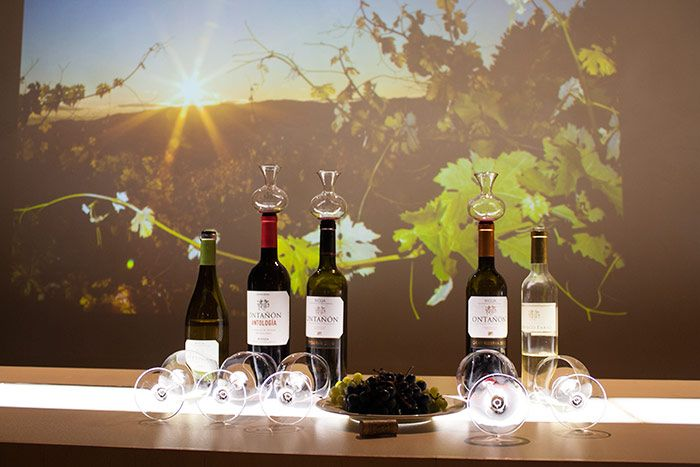 Qué ver en La Rioja - Bodegas