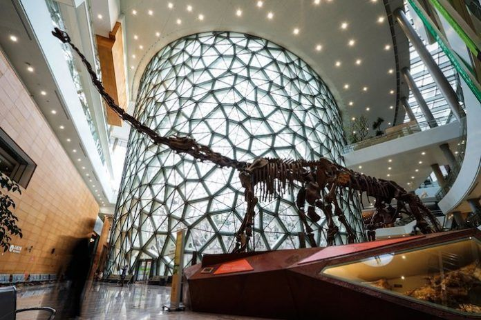 Museo de historia natural china