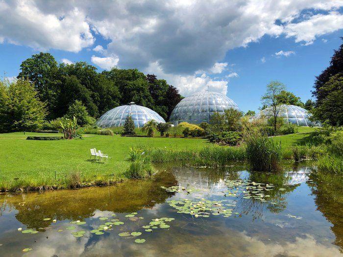 jardín botánico en la ciudad