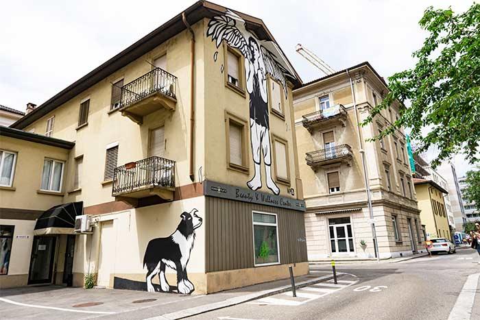 Arte urbano - Cantón del Tesino