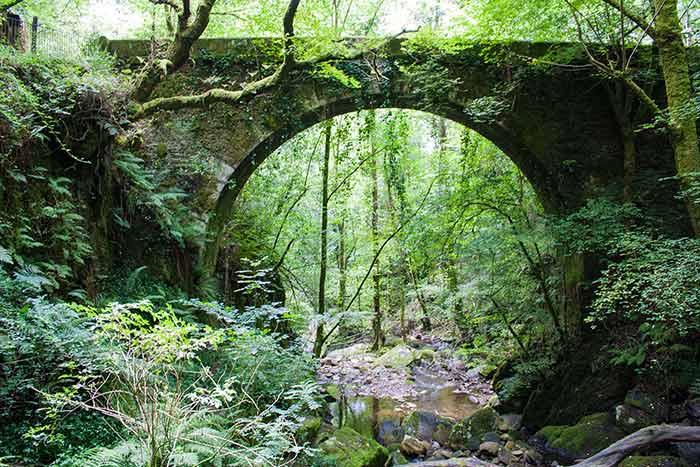 Puente de piedra en Fragas do Eume