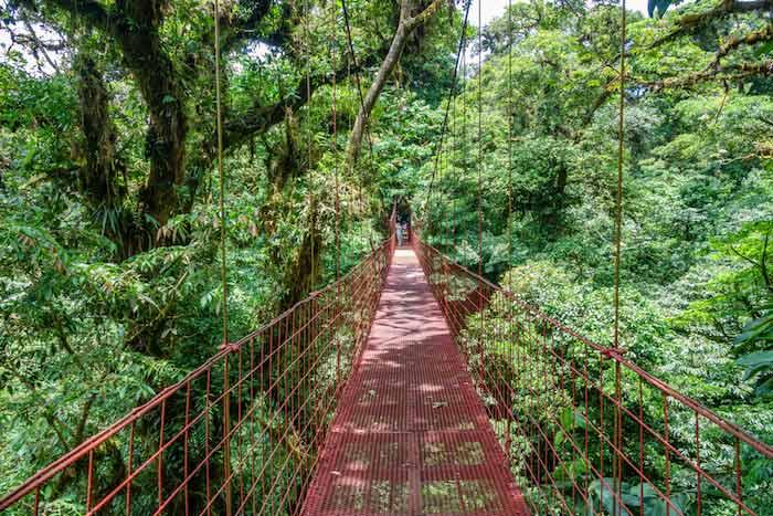 Puente colgante en Monteverde, Costa Rica