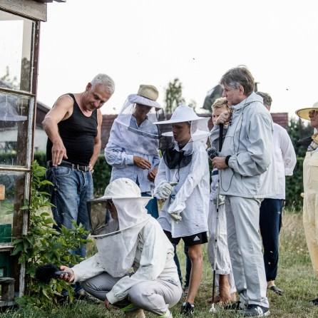 Gruppe an einem Bienenstand.