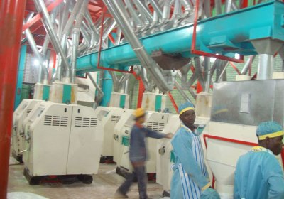 Medium Flour Processing Machine