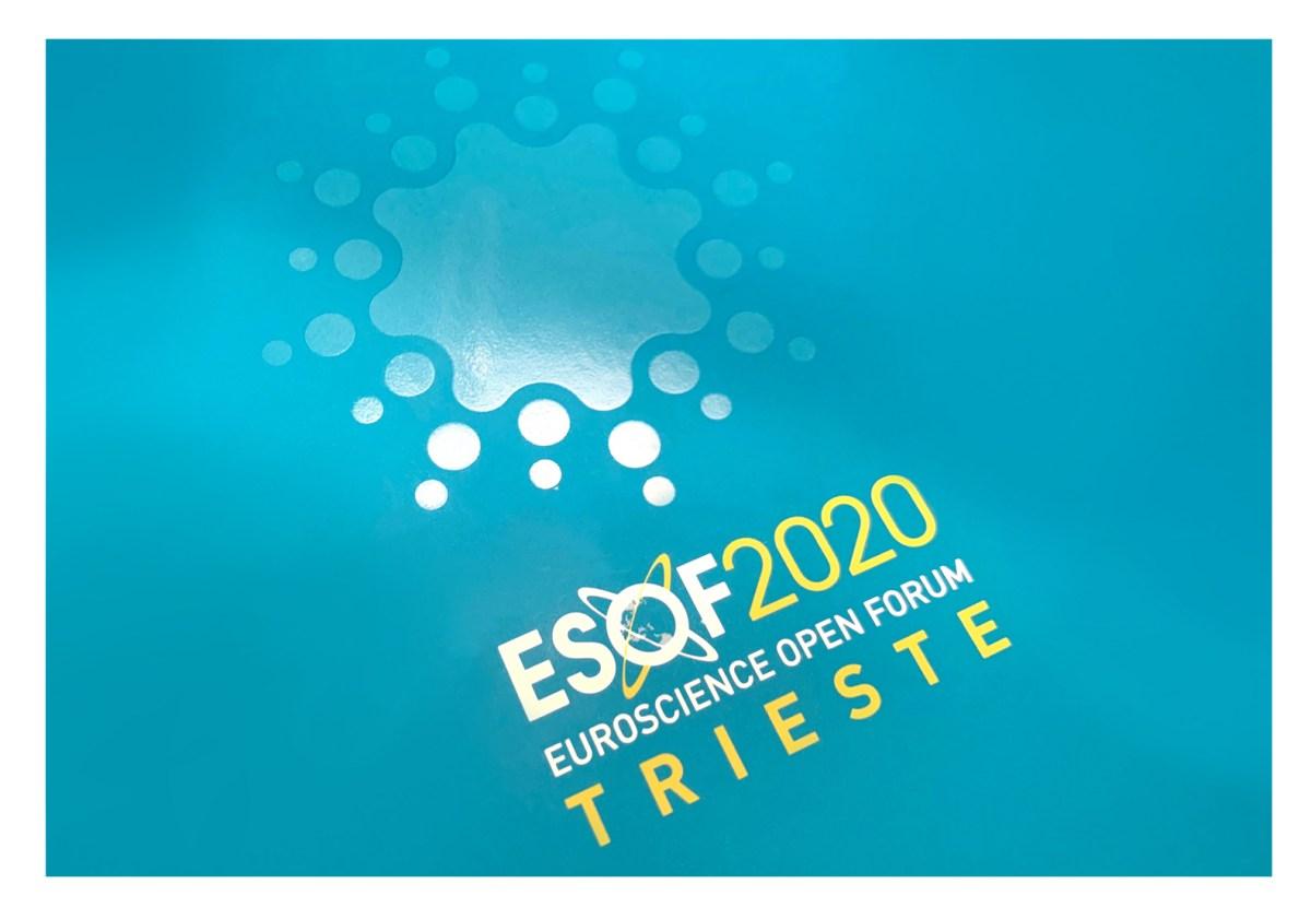 Sintesi/HUB per Esof2020