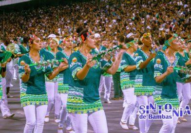 Escolas de Samba esperam grande público na Virada Cultural