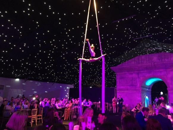 aerialist hampshire
