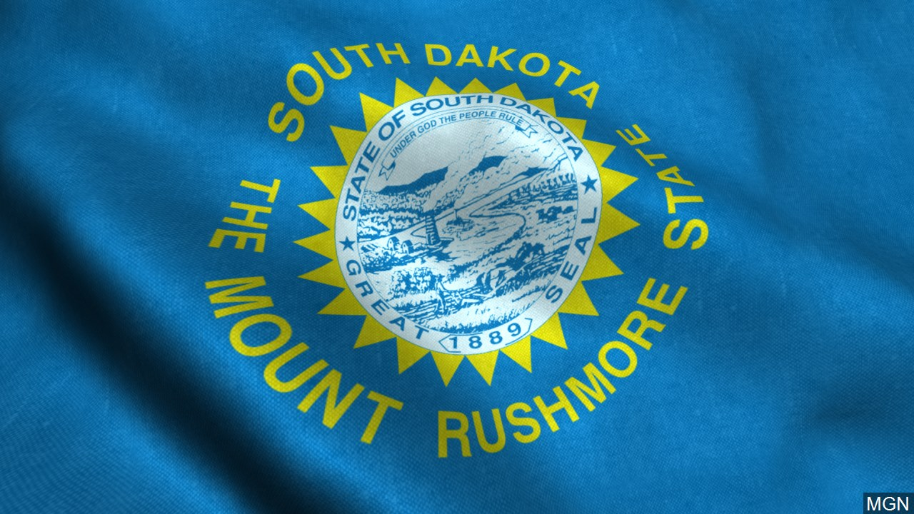 South Dakota flag_1550791845980.jpg.jpg