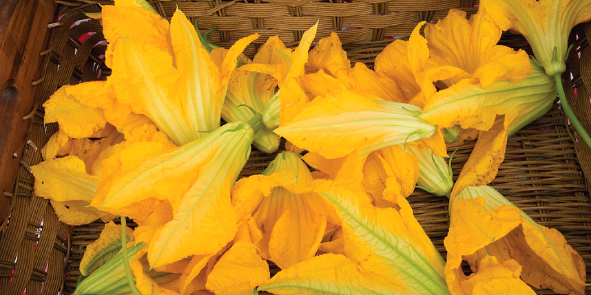 Fresh blooms for Sippity Sup's squash blossom pizza.