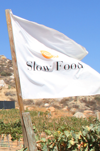 Slow Food Valle de Guadalupe