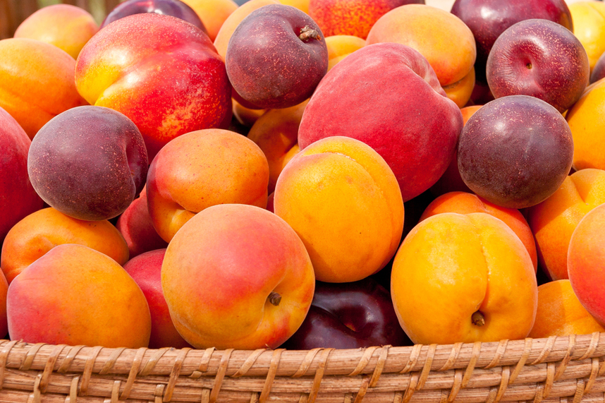 choosing stone fruit