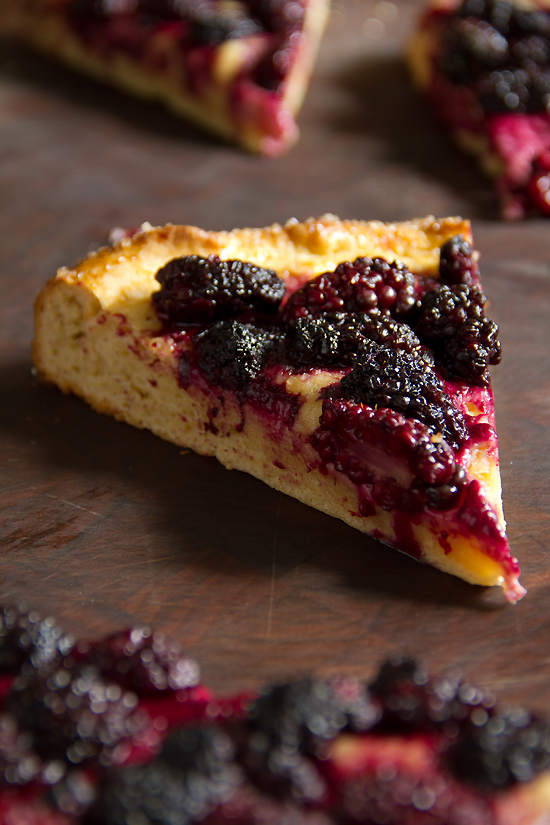 Blackberry Brioche Tart