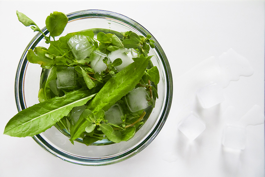 refreshing salad greens in ice water