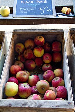The Apple Farm Anderson Valley, CA