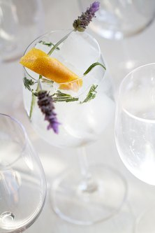 Spanish-Style Gin-Tonic with Lavender and Grapefruit