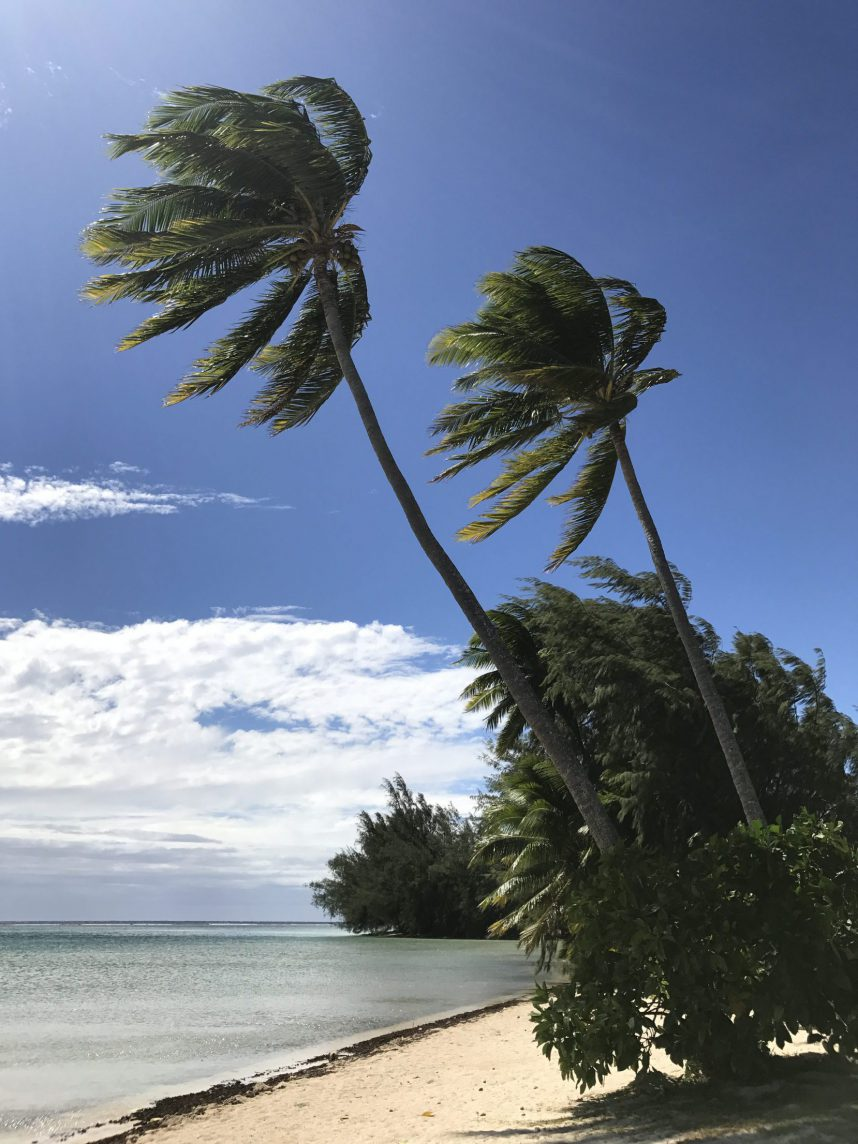 Windy beach Moorea