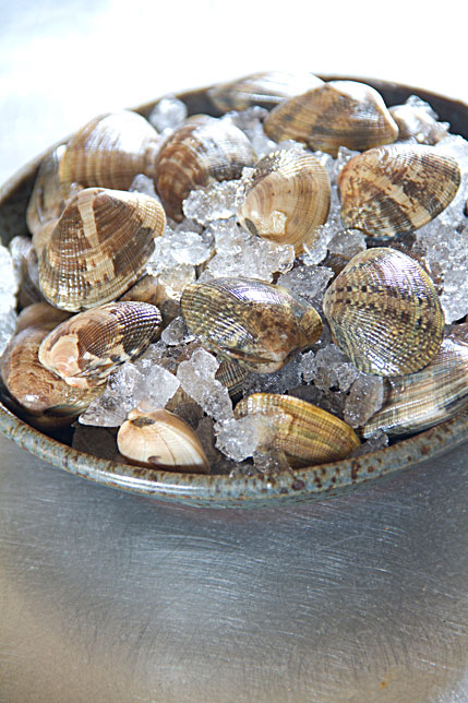 clams on ice