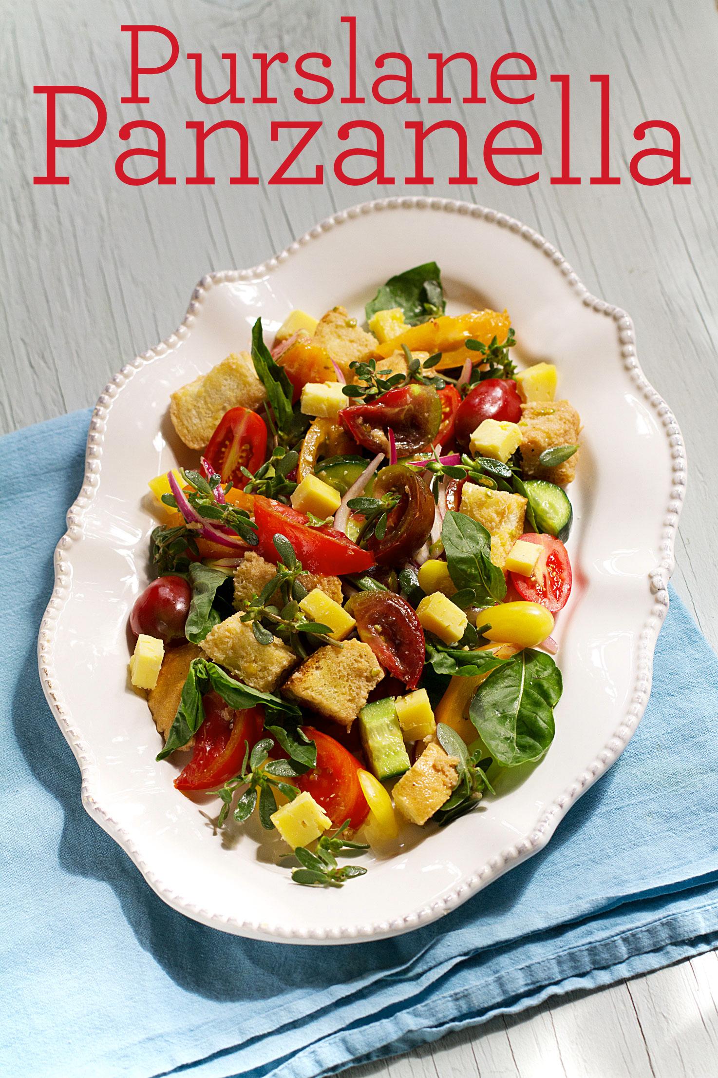 Purslane Panzanella Salad (Italian Bread Salad)