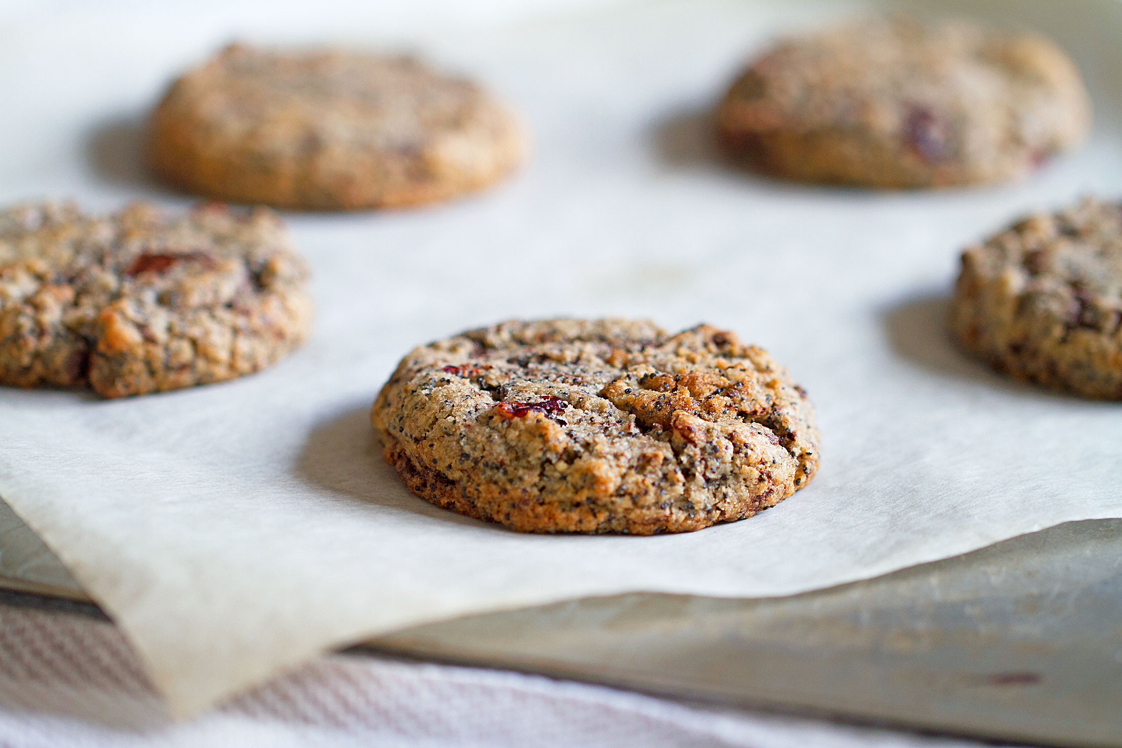 Rye-Cranberry Chocolate-Chunk Cookies