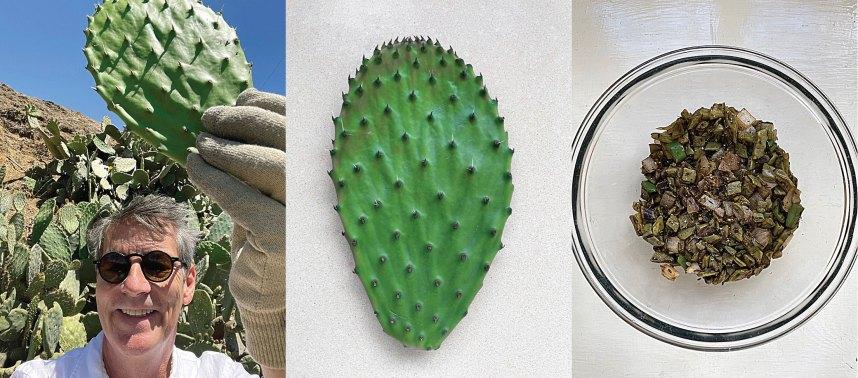 Cactus Paddle Tacos