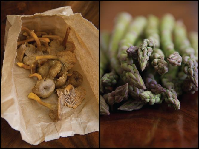 Chanterelle, Asparagus