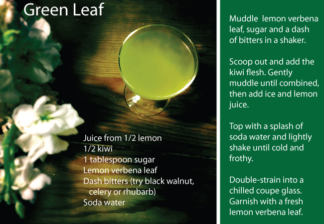 Green Leaf Mocktail from The Table Set Podcast
