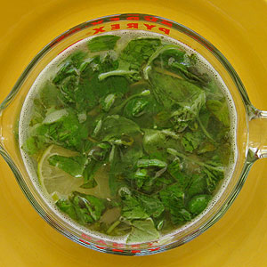 steeping basil for simple syrup