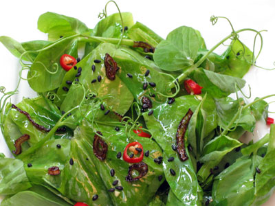 asian saald with pea tendrils or shoots and chili