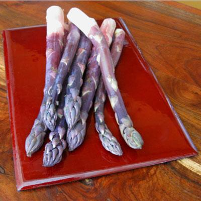 stalks of purple asparagus
