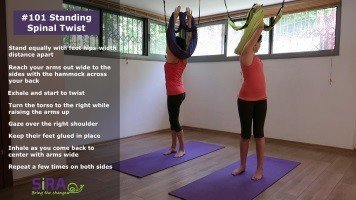 Standing Spinal Twist exercise #101