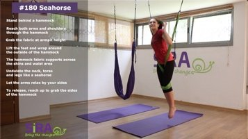 Seahorse – exercise #180