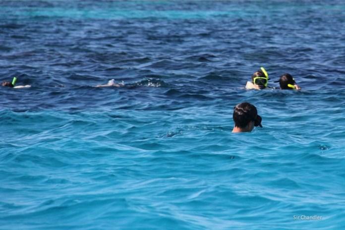 bahamas-snorkel-0076