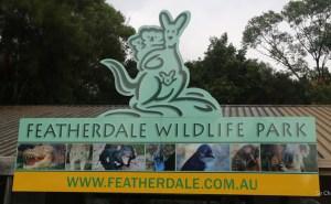 D-featherdale-australia