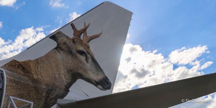 Jetsmart anuncia sus rutas argentinas el 12 de febrero