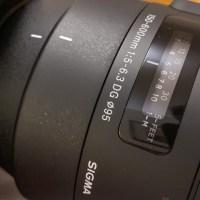 Las fotos con un lente 150-600 de Sigma