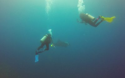 My Friends With Two Mantas at Black Rock