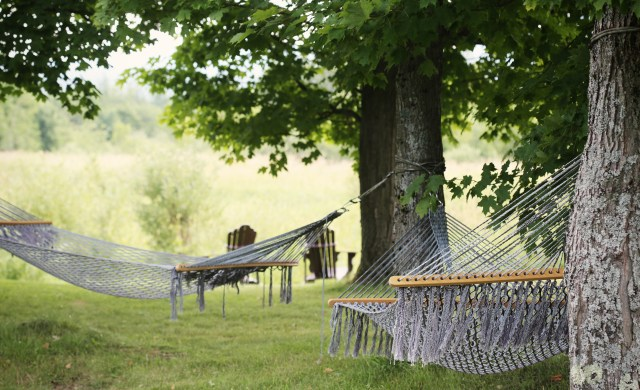trees-countryside-green-chill